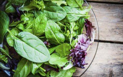 🍃 Las verduras de hoja verde mas saludables para tu organismo