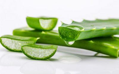 10 beneficios del gel de aloe vera para la piel